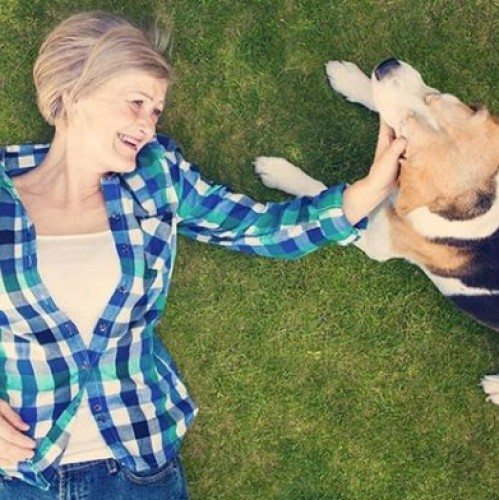 Lessons From A Faithful Companion | Guidance Corner | Bridge to Better Living